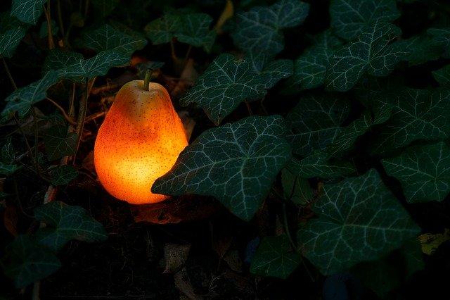 Comment choisir l'éclairage de son jardin?